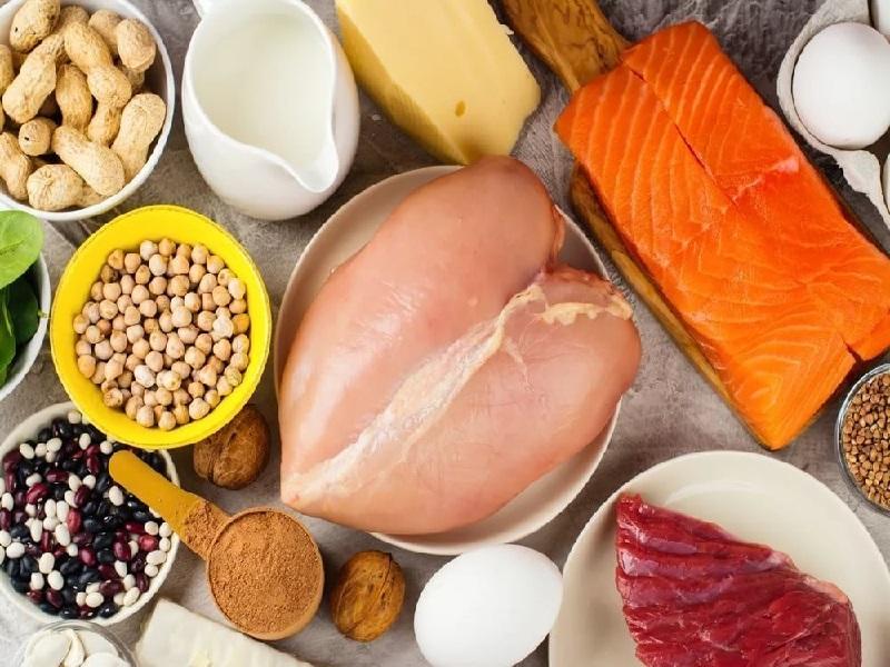 Белковая диета - польза или вред