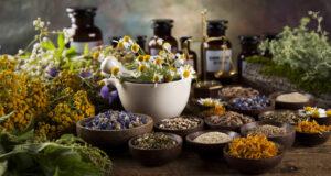 15 лечебных трав от серьезных болезней